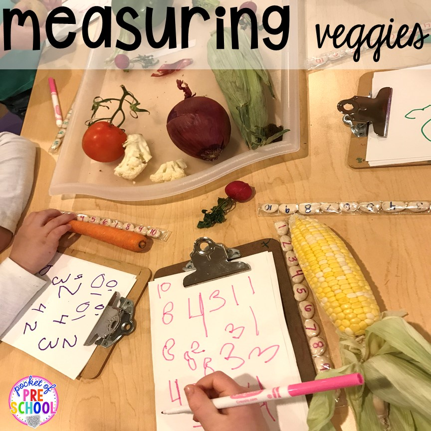 Measuring veggies non-standard measurement fun more fun farm math & science activities for my preschool, prek, and kindergarten kiddos. #farmtheme #preschool