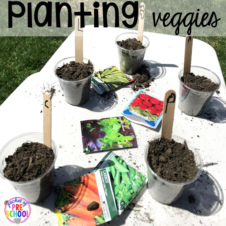 Planting veggies for a farm theme more fun farm math & science activities for my preschool, prek, and kindergarten kiddos. #farmtheme #preschool