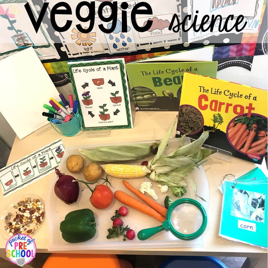 Veggie science exploration more fun farm math & science activities for my preschool, prek, and kindergarten kiddos. #farmtheme #preschool