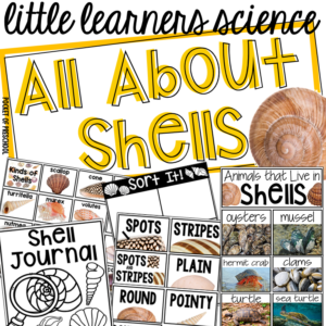 All About Shells - a science unit for preschool, pre-k, and kindergarten with real photos, investigations, parent note, and teacher plans.