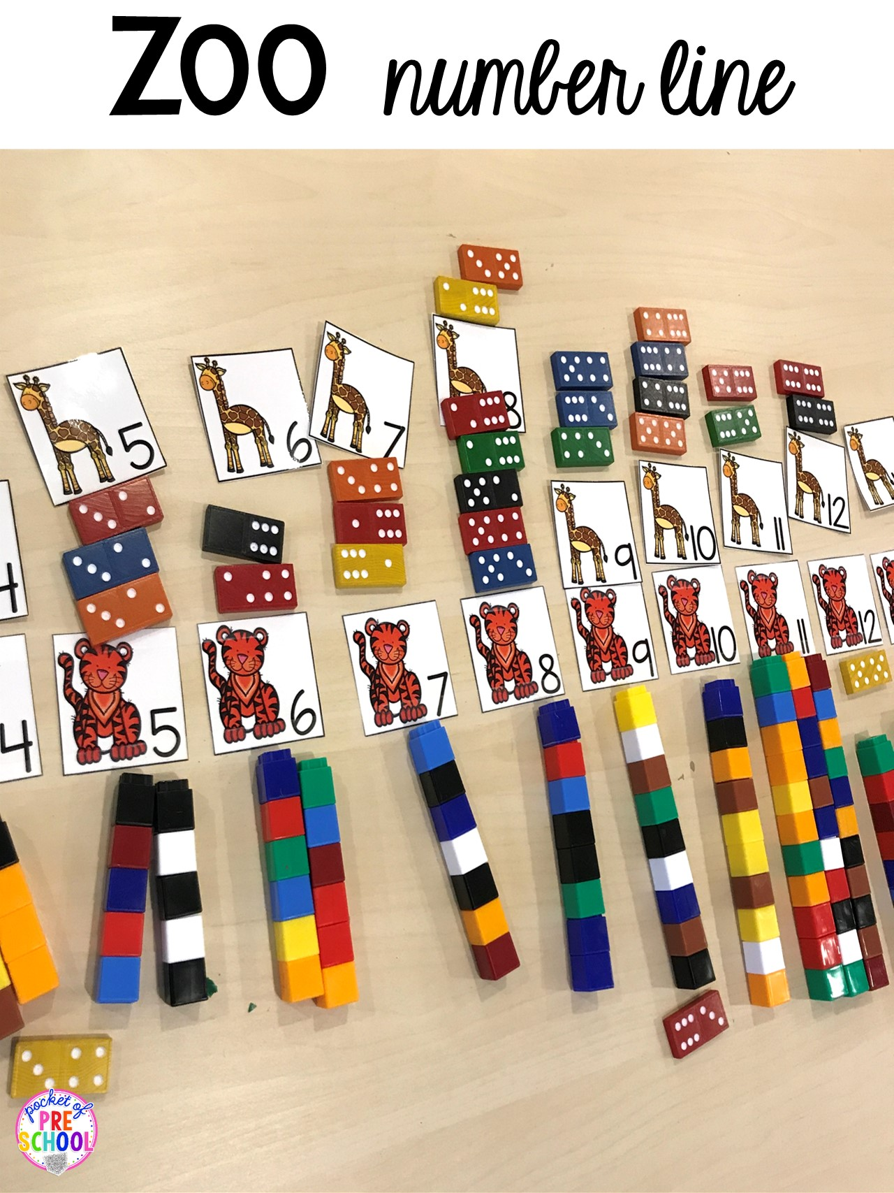 Zoo number line with math manipulatives and animal number cards for a zoo them to practice number identification and counting. #zootheme #preschool #prek