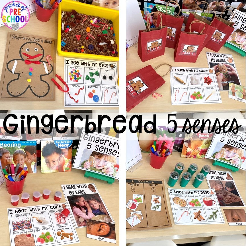 Gingerbread 5 Senses science unit is packed with hands-on activitives made just for preschool, pres-school, and kindergarten.