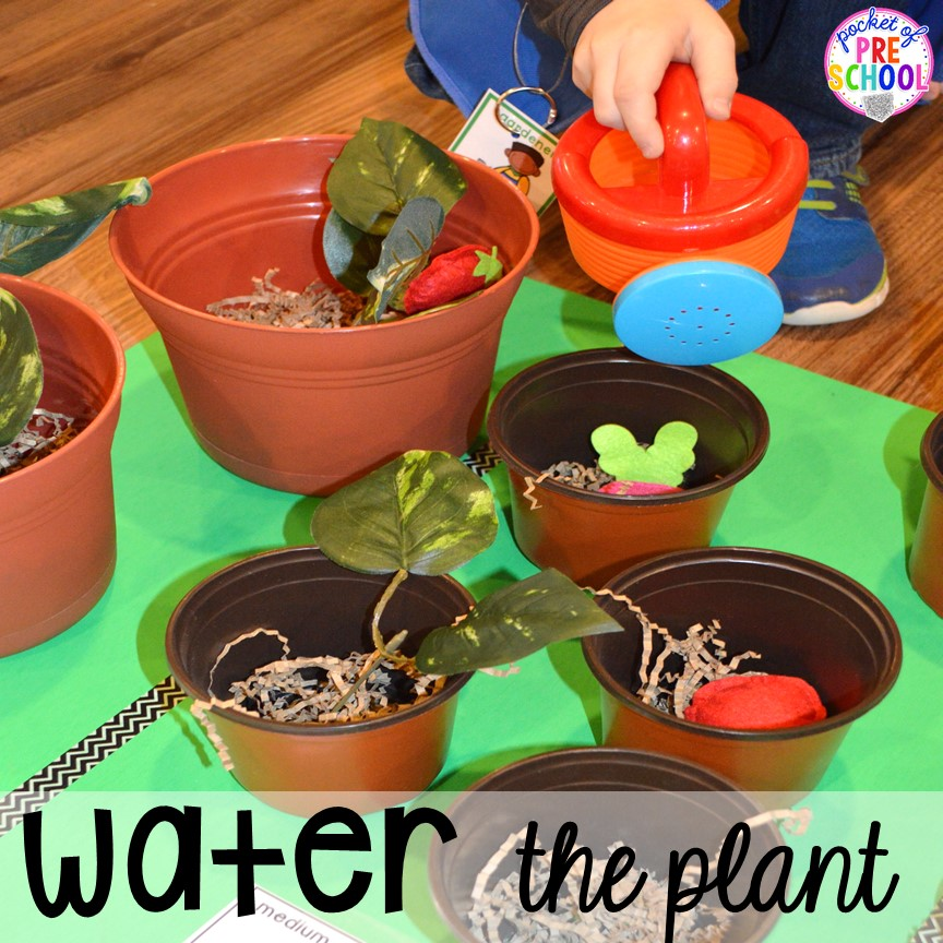 Water the plants in the Garden Shop Dramatic Play for a spring theme, Mother's Day theme, or summer theme when everything is growing and blooming. Any preschool, pre=k, and kindergarten kiddos will LOVE it (and learn a ton too). #flowershop #gardenshop #presschool #prek #dramaticplay