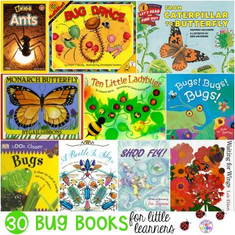 Bug Books for Little Learners - Pocket of Preschool