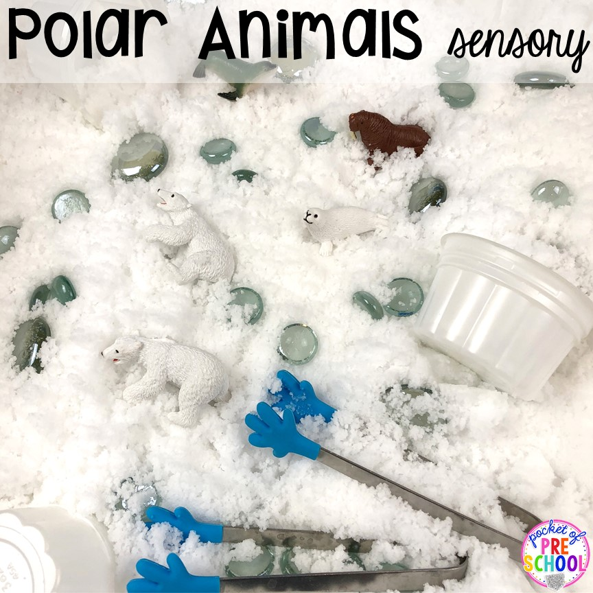 Polar animals sensory table! Polar animal themed activities and centers for preschool, pre-k, and kindergarten. #polaranimals #polaranimaltheme #preschool #prek
