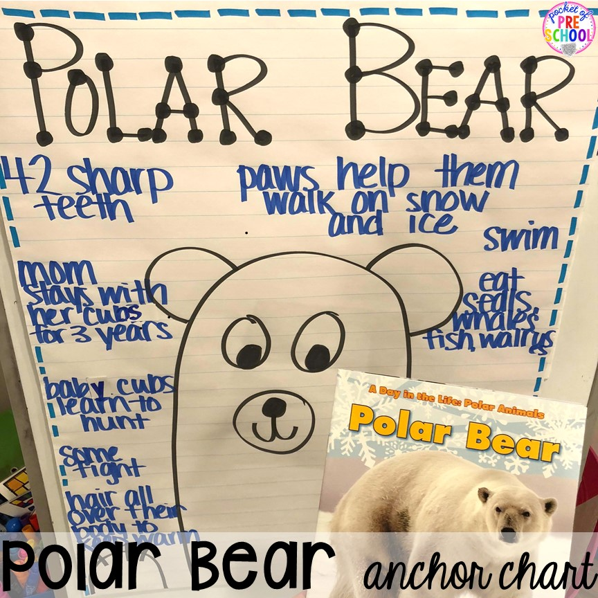 Polar bear anchor chart! Polar animal themed activities and centers for preschool, pre-k, and kindergarten. #polaranimals #polaranimaltheme #preschool #prek