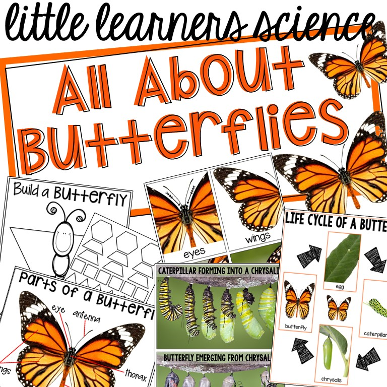 All About Butterflies Science Unit for preschool, prek, and kindergarten.