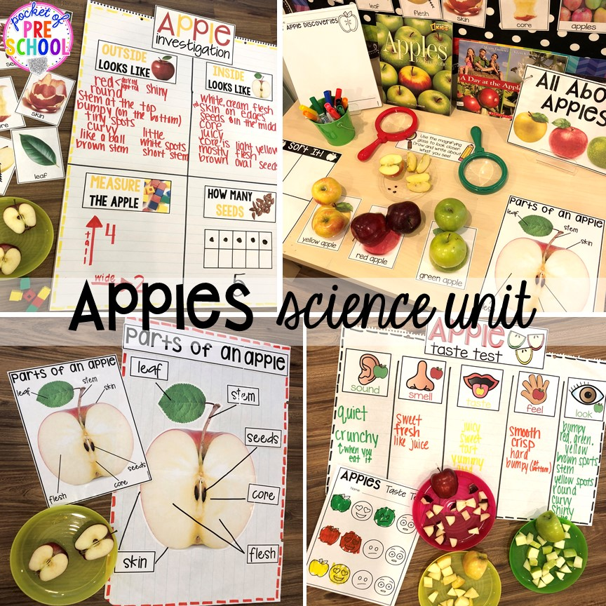 Apple science unit for preschool, pre-k, and kindergarten #preschoolscience #sciencecenter #prekscience #kindergartenscience