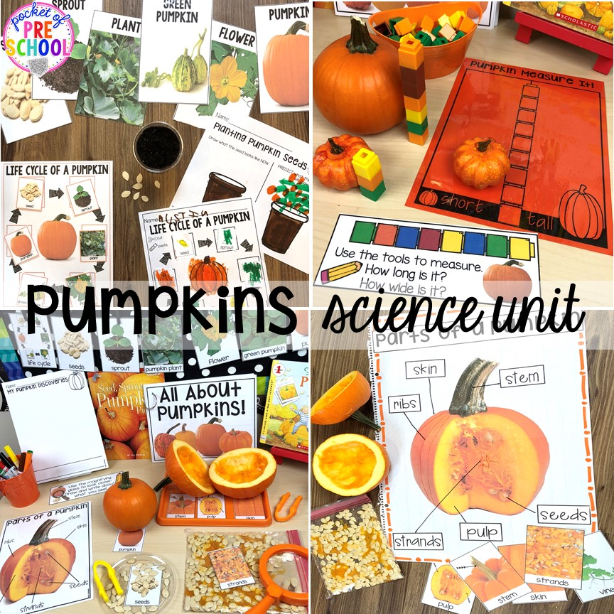 Pumpkin science unit for for preschool, pre-k, and kindergarten #preschoolscience #sciencecenter #prekscience #kindergartenscience