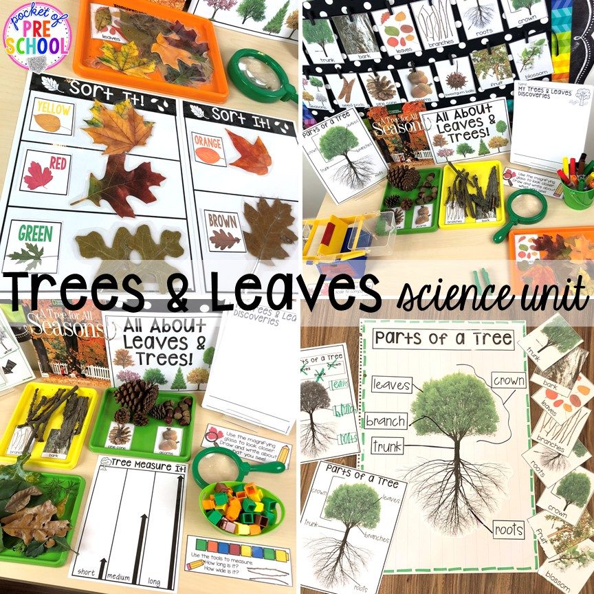 Trees and leaves science unit for preschool, pre-k, and kindergarten #preschoolscience #sciencecenter #prekscience #kindergartenscience