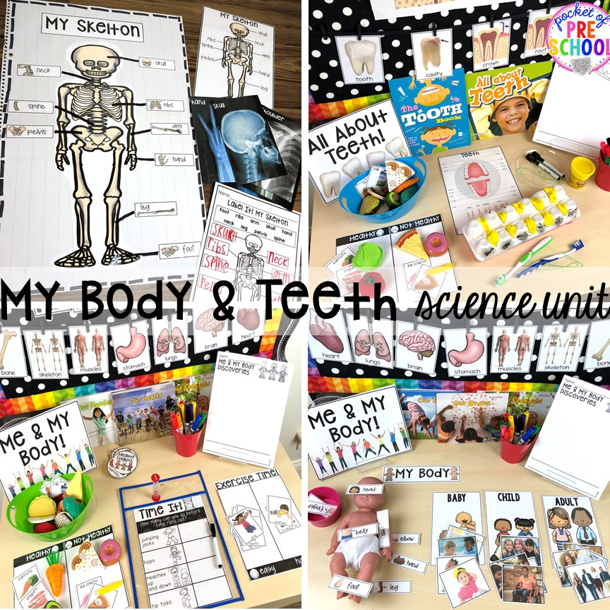 My body or health science unit and dental health science unit for preschool, pre-k, and kindergarten #preschoolscience #sciencecenter #prekscience #kindergartenscience