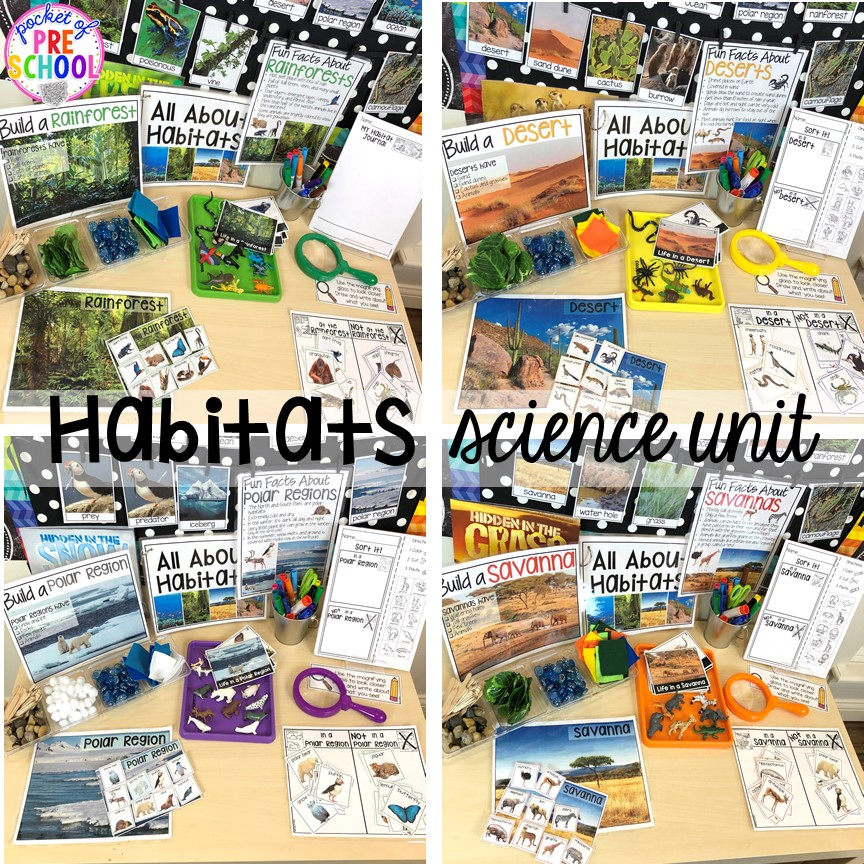 Habitats science unit (rainforest, savanna, desert, ocean, polar region) for preschool, pre-k, and kindergarten #preschoolscience #sciencecenter #prekscience #kindergartenscience