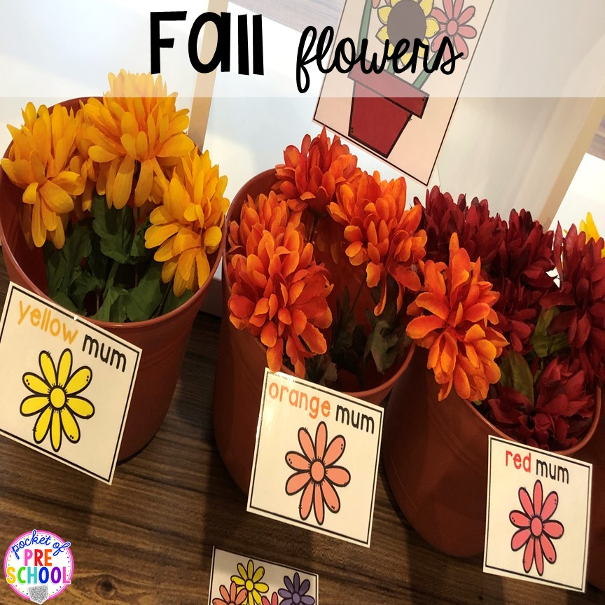 Fall flowers (sorting by color) - How to change pretend into an Apple Orchard for preschool, pre-k, and kindergarten. #appleorchard #dramaticplay #pretendplay #preshool #prek #fall