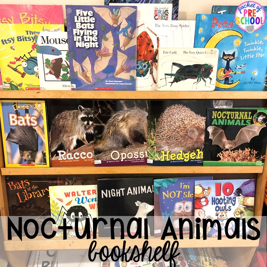 Nocturnal animals books! Plus more Nocturnal Animals activities and centers for preschool, pre-k, and kindergarten. #preschool #prek #nocturnalanimalstheme #falltheme