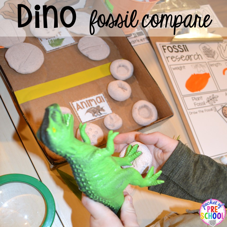 Fossil compare! ow to make a Dinosaur Dig Site in dramatic play and embed tons of math, literacy, and STEM into their play. Perfect for preschool, pre-k, and kindergarten. #preschool #prek #dinosaurtheme #dinodig #dramaticplay