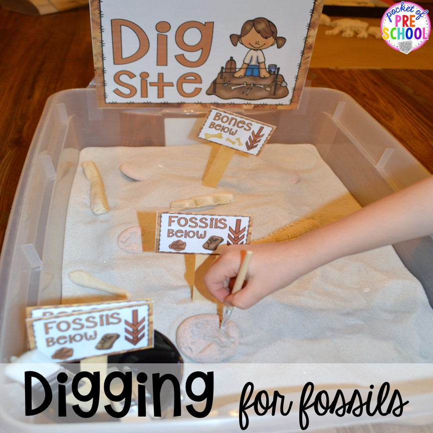 Digging for fossils! ow to make a Dinosaur Dig Site in dramatic play and embed tons of math, literacy, and STEM into their play. Perfect for preschool, pre-k, and kindergarten. #preschool #prek #dinosaurtheme #dinodig #dramaticplay